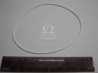 Кольцо уплотнительное силиконовое тонкое (производство Украина) (арт. 740.1002031)