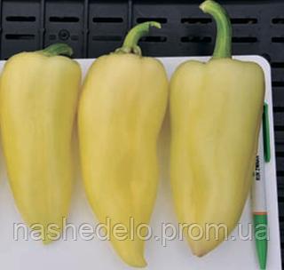 Семена перца сладкого Сноувайт F1 1000 семян Rijk Zwaan