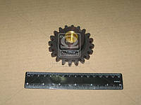Шестерня компрессора (Производство Украина) А29.01.201А