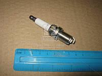 Свеча зажигания EON TITAN PLATINUM (производство CHAMPION) (арт. CET12P), AAHZX