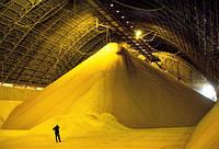 Бескаркасное зернохранилище — быстро, качественно и недорого!