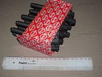 Комплект болтов головки цилидра RENAULT F9Q (производство Elring), ACHZX