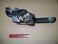 Кулак поворотный ВАЗ 21230 правый под АБС (производство АвтоВАЗ), AGHZX