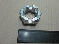 Гайка М30х1,5 пальца реактивной тяги корончатая КАМАЗ оцинковка (производство Россия) (арт. 5511-2919031)