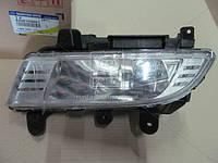 Фара противотуманная  передняя  левая  KYRON (производство SsangYong), AFHZX