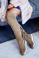 Сапоги, полусапожки, ботфорты, ботинки зимние