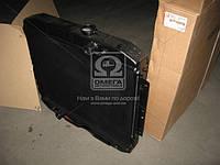 Радиатор водяного охлаждения ГАЗ 3307  (арт. 3307-1301010-70А), AHHZX