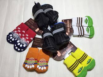 Взуття та шкарпетки для тварин