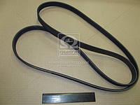 Ремень приводной (производство SsangYong) (арт. 6719970192), AEHZX