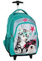 Рюкзак школьный на колесах с кошкой и собакой Paso PEK-997