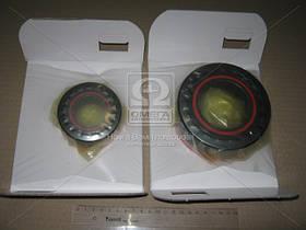Подшипники ступицы SmartSet (33213+33208) (пр-во FAG) 723703110, AGHZX