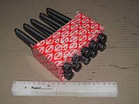 Комплект болтов головки цилидра VAG1.9TDI/2.0TDIAJM/ANU/ASZ/ATD (производство Elring), ADHZX