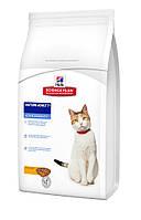 Hills Science Plan - 0,3 кг корм для кошек старше 7 лет с курицей