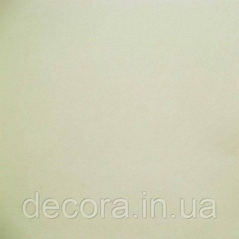 Рулонні штори міні Cairo 0500, фото 2