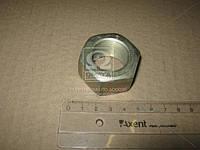 Гайка М27х1,5 ОЦИНКОВАННАЯ пальца ушка рессоры задн. ЗИЛ, балансира подвескиКАМАЗ(производство Украина)
