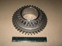 Шестерня вала промежуточного МТЗ 900, 920, 950 (производство МЗШ), AGHZX