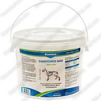 Canhydrox Petvital Gag, Canina — витамины для суставов и здорового роста