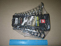 Набор ключей комбинированных 6-22мм, 12 пр., пластик  (арт. dk-st-12), ABHZX