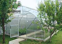 Арочная теплица Митлайдера из алюминиевого каркаса и листового поликарбоната.