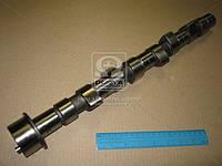 Распредвал FIAT DUCATO 2.8TDI 8140.27/8140.43/8140.43N 1997-2002 (производство AE) (арт. CAM681), AGHZX