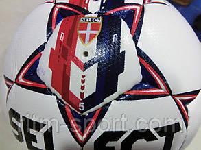 Мяч футбольный Select Prestige №5, фото 2