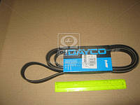 Ремень поликлиновый (производство DAYCO) (арт. 6PK2525), ACHZX