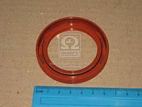 Уплотняющее кольцо, коленчатый вал SAAB FRONT 48X66.65X8 (производство GOETZE), AAHZX