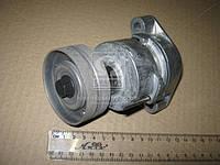Натяжной ролик, поликлиновой  ремень (производство SKF) (арт. VKM 35008), AEHZX