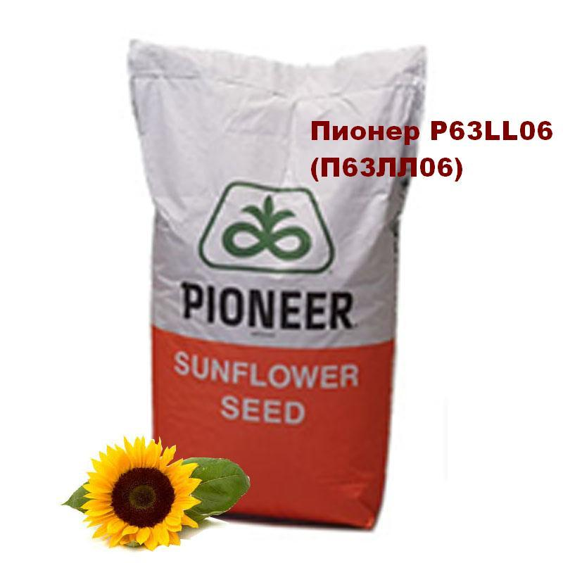 Семена подсолнуха Пионер P63LL06 (112 дн.)/ Насіння соняшнику Піонер P63LL06