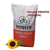 Насіння соняшнику Піонер PR64F50 (115 дн.) Семена подсолнуха Пионер PR64F50