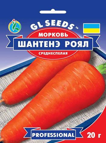 Морковь Шантене Роял, фото 2