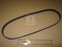 Поликлиновой ремень (производство Contitech) (арт. 5PK884), ABHZX