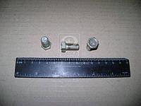 Болт М10х18 петли двери ВАЗ 2108-15 (пр-во Белебей) 2108-6106072