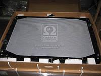 Радиатор охлаждения DAF 95XF 96- (TEMPEST), AIHZX