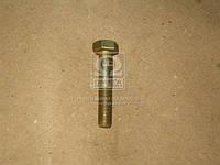 Болт М10х55 амортизатора кабины КАМАЗ (Производство Белебей) 1/58887/21