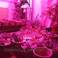 Фитолампа для растений PAR 36 Led  E27 230V, фото 3