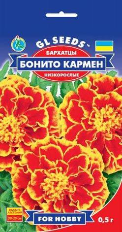 Бархатцы (Чернобривцы) Бонито Кармен, фото 2
