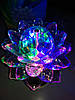 Диско лампа Цветок LED (проектор) светодиодная, на проводе 220V, фото 5