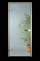 Стеклянные двери с прозрачным стеклом и рисунком по одной стороне 900х2100мм