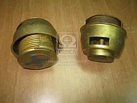 Термостат (арт. ТС-109-1306100-ГЧ), ABHZX