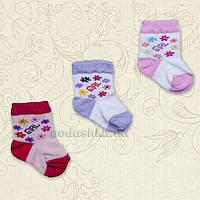 Носочки Беби Бетис 1018 Girl 8 -10 цвет ассорти