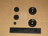 Ремкомплект цилиндра тормозного заднего (рабочего.) (производство Украина) (арт. 5301-35020)