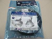Ремкомплект усилителя тормозов вакуумных ВОЛГА,ГАЗЕЛЬ (производство ГАЗ) (арт. 3110-3510800), AAHZX