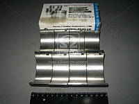Вкладыши шатунные Н2 Д 50 АО20-1 (производство ЗПС, г.Тамбов) (арт. 50-1004140-А), ABHZX