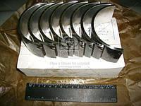 Вкладыши шатунные Р1 Д 40/48/65 АО20-1 (производство ЗПС, г.Тамбов) (арт. А23.01-81-65сб), ACHZX