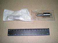 Распылитель ДТ 75М (Производство АЗПИ, г.Барнаул) 6А1-20с2д