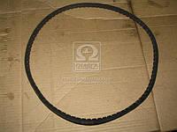 Ремень 11х10х1045 зубчатый вентилятора ГАЗ 53, КРАЗ, БЕЛАЗ (производство ЯРТ)