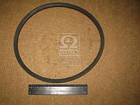 Ремень 11х10х750 ТАТРА, ИКАРУС (производство ЯРТ) (арт. 11х10х750)