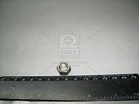 Гайка винта регулировочного коромысла (производство ММЗ) (арт. Д02-063)