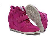 Кроссовки ASH Italia розовые